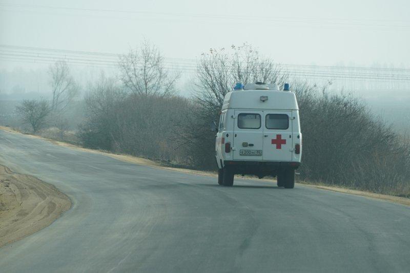 Девятилетняя девочка и водитель пострадали в столкновении «Шкоды» и «Киа» под Воронежем